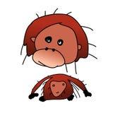 Orangutan Fotografia Stock