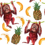 Orangutan baby. Orangutan baby, pineapple and banana seamless pattern. A little monkey and exotic fruits. Watercolor hand painted illustration Royalty Free Stock Image