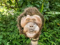 Orangutan Head Wood Sculpture Carved by Hand. In Orangutan Conservation in Indonesia Royalty Free Stock Photos