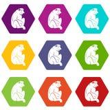 Orangutan icon set color hexahedron Royalty Free Stock Photos