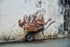 Free Orangutan In Borneo, Malaysia Stock Image - 98519151