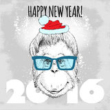 Orangutan monkey Hipster with blue glasses and Christmas hat. Stock Photo