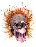 Orangutan Watercolor απεικόνιση χαριτωμένος πίθηκος σχέδιο πουκάμισων γραμμάτων Τ μόδας ελεύθερη απεικόνιση δικαιώματος