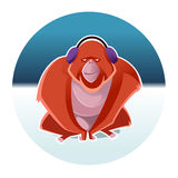 Orangutan and the winter. Vector image of an Orangutan and the winter Royalty Free Stock Photography
