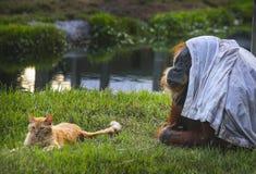 Orangutang και πορτοκαλιοί τιγρέ φίλοι γατών Στοκ εικόνα με δικαίωμα ελεύθερης χρήσης