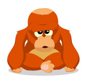Orangutans so cute Stock Images