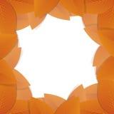 Oranje Autumn Leafs Vector illustratieachtergrond Stock Foto's