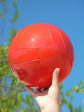Oranje bal Royalty-vrije Stock Fotografie