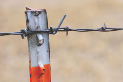 Oranje Barb Wire Fence Stock Afbeelding