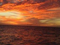 Oranje bewolkte hemel Stock Afbeeldingen