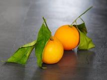 Oranje bladen Stock Afbeelding