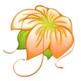 Oranje bloem Royalty-vrije Illustratie