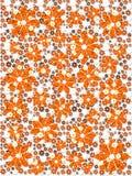 Oranje bloempatroon Stock Foto