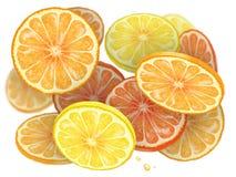 Oranje cascade stock foto