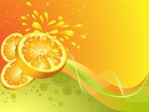 Oranje citrusvruchten. Stock Foto's