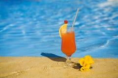 Oranje cocktail en een gele bloem stock fotografie