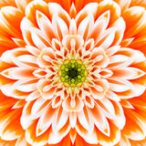 Oranje Concentrisch Bloemcentrum. Mandala Kaleidoscopic-ontwerp stock afbeelding