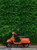 Oranje die autoped aan straatkant wordt geparkeerd met groene bladerenmuur royalty-vrije stock foto's
