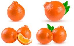 Oranje die mandarijn of Mineola met plakken op witte achtergrond worden geïsoleerd Reeks of inzameling Royalty-vrije Stock Afbeeldingen