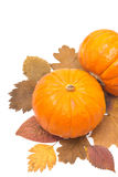 Oranje die pompoen twee op de herfstbladeren op wit worden geïsoleerd Stock Afbeelding
