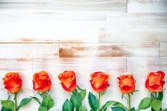 Oranje die rozen op een rij op houten achtergrond worden opgesteld Royalty-vrije Stock Foto