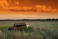 Oranje droom Stock Afbeelding