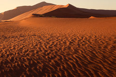 Oranje duin in Namib Stock Fotografie