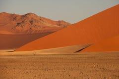 Oranje duin in Namib Stock Afbeeldingen