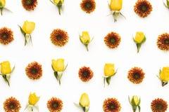 Oranje en Geel Bloemenpatroon Stock Afbeelding