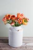 Oranje en gele Perzische boterbloemenbloemen ranunculus in grijze wijnoogst kan, ruimte kopiëren Stock Fotografie