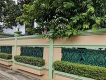 Oranje en groene die muur met verse groene bladeren wordt verfraaid stock fotografie