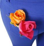 Oranje en roze rozen in blauwe zak Stock Foto's