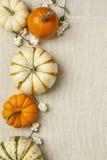 Oranje en witte decoratieve pompoenen op de witte achtergrond van de jutedoek Verticaal beeld met exemplaarruimte Royalty-vrije Stock Foto