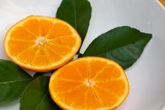 Oranje enig en deel Stock Afbeeldingen