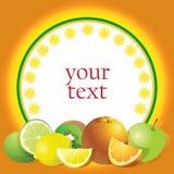 Oranje etiket met citrusvruchten vector illustratie