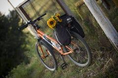 Oranje fiets die zich dichtbij ijzeromheining bevinden Stock Afbeelding
