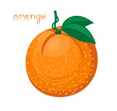 Oranje Fruit stock illustratie