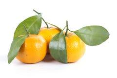 Oranje Fruit Stock Foto's