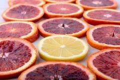 Oranje Fruit Achtergrond met Sinaasappel en citroenplak op witte achtergrond wordt geïsoleerd die Hoogste mening Royalty-vrije Stock Afbeeldingen