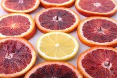 Oranje Fruit Achtergrond met Sinaasappel en citroenplak op witte achtergrond wordt geïsoleerd die Hoogste mening Stock Fotografie