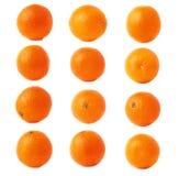 Oranje fruit dat met de veelvoudige waterdalingen wordt behandeld, die over de witte achtergrond, reeks worden geïsoleerd verschi stock foto