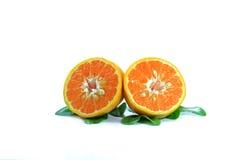 Oranje fruit op witte achtergrond Stock Fotografie