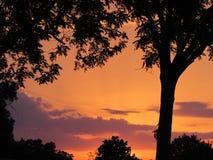 Oranje gloedzonsondergang Stock Foto's