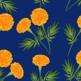 Oranje Goudsbloem op Indigo Blauwe Achtergrond Vector illustratie Royalty-vrije Stock Foto's