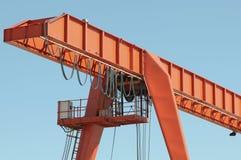Oranje hagedis Royalty-vrije Stock Fotografie