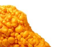 Oranje Hobbelige Pompoen stock foto's