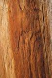Oranje houten textuur Royalty-vrije Stock Afbeelding