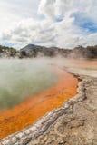 Oranje kant van Champagne Pool-warm watermeer Stock Afbeeldingen