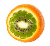 Oranje kiwi Stock Afbeelding