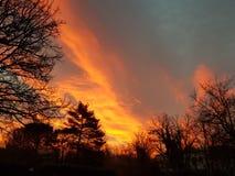 Oranje Kleur royalty-vrije stock fotografie